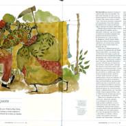Matéria na Revista Continente [PE]